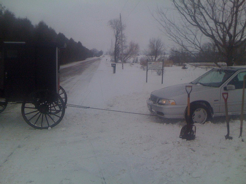 Amish Tow Buggy